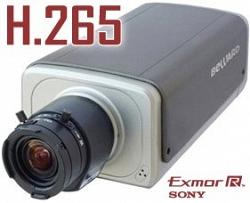Внутренняя корпусная IP-видеокамера Beward B5650
