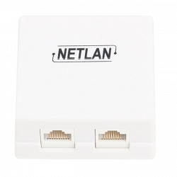 Настенная розетка NETLAN EC-UWO-2-UD2-WT-10