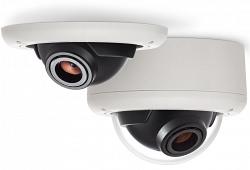 Купольная IP видеокамера Arecont AV5245DN-01-D-LG