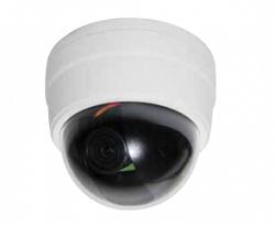 Купольная IP видеокамера Hitron NDT-6231