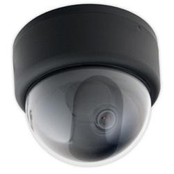 Купольная IP-видеокамера STC-IPX2050A/1