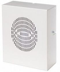 АС-5-30/100(НМ) Настенная акустическая система