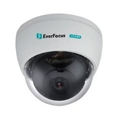 Купольная AHD видеокамера EverFocus ECD-900