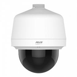 Купольная IP видеокамера PELCO P1220-PWH1