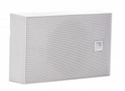 Настенный громкоговоритель AMC iSpeak 5 White (RAL9016)