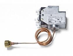 Johnson Controls P20EA-9160L
