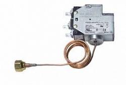 Johnson Controls P20EA-9530FC